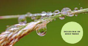 bastone-della-pioggia