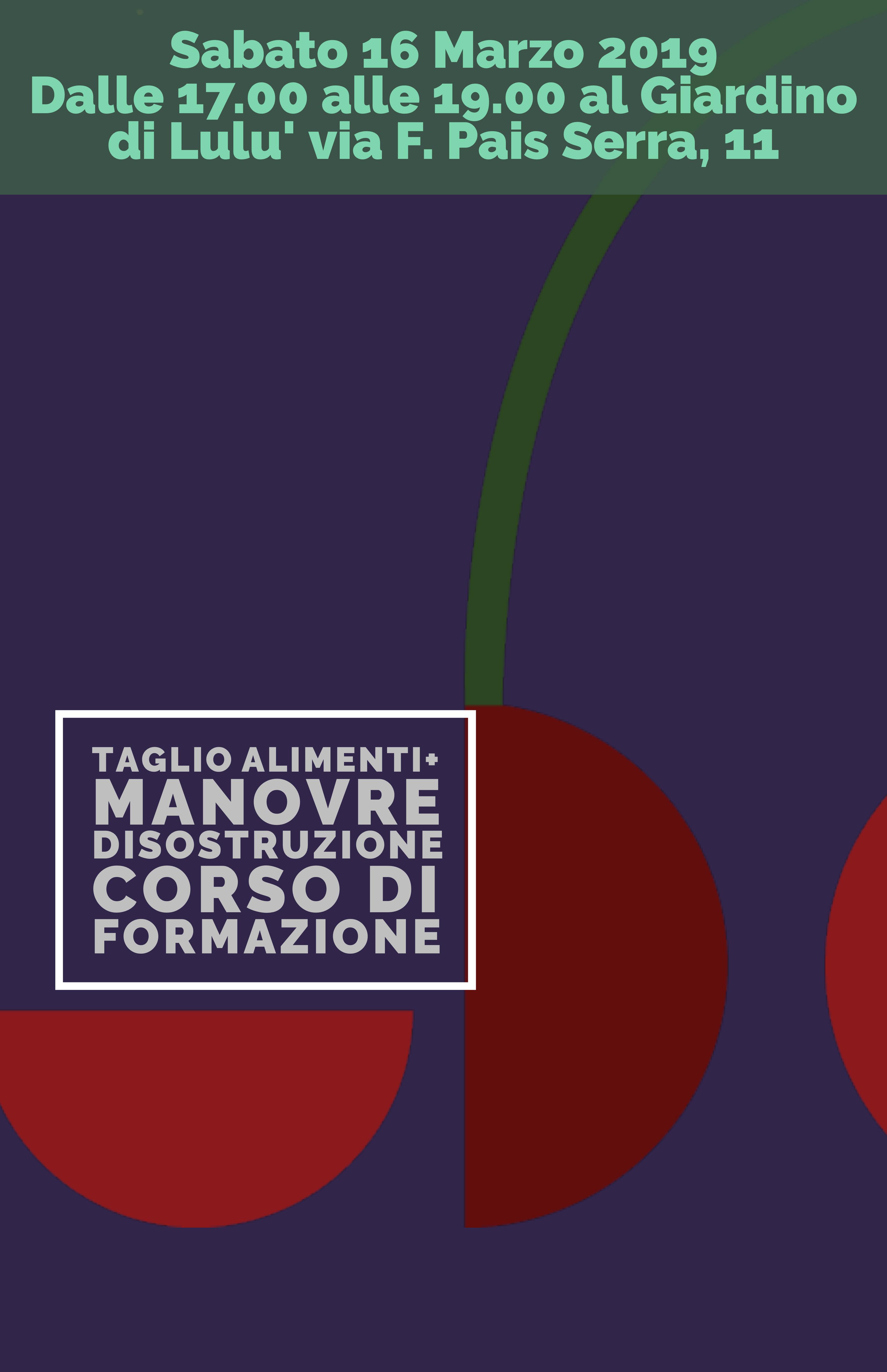 seguilbattito-aps-corso-formazione-roma-disostruzione-taglio-cibi-16-marzo-2019_copy